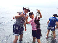 浜辺探検ツアー
